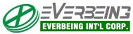 logo-everbeing